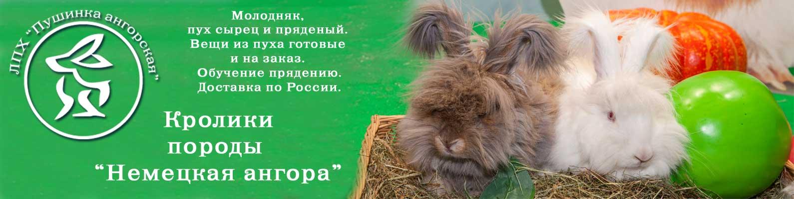 """ЛПХ """"Пушинка ангорская"""""""