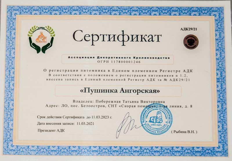 """Сертификат о регистрации питомника """"Пушинка ангорская"""""""